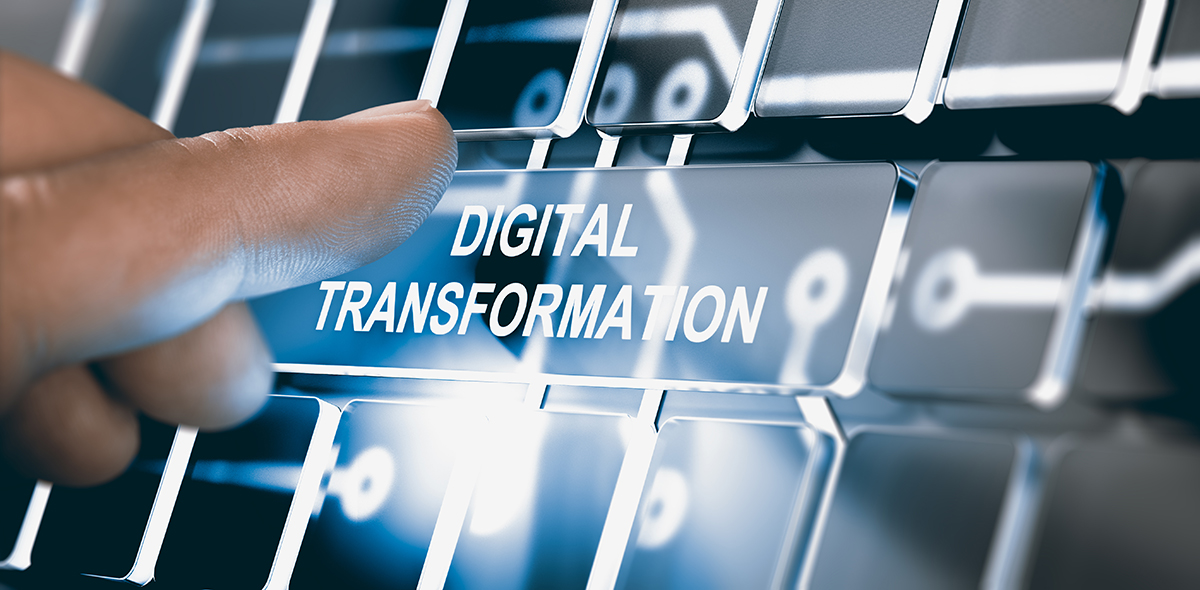 The Perks of Digital Transformation for SMEs